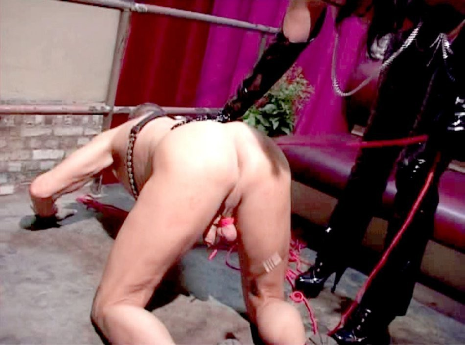 gf welcomes every fuck – BDSM