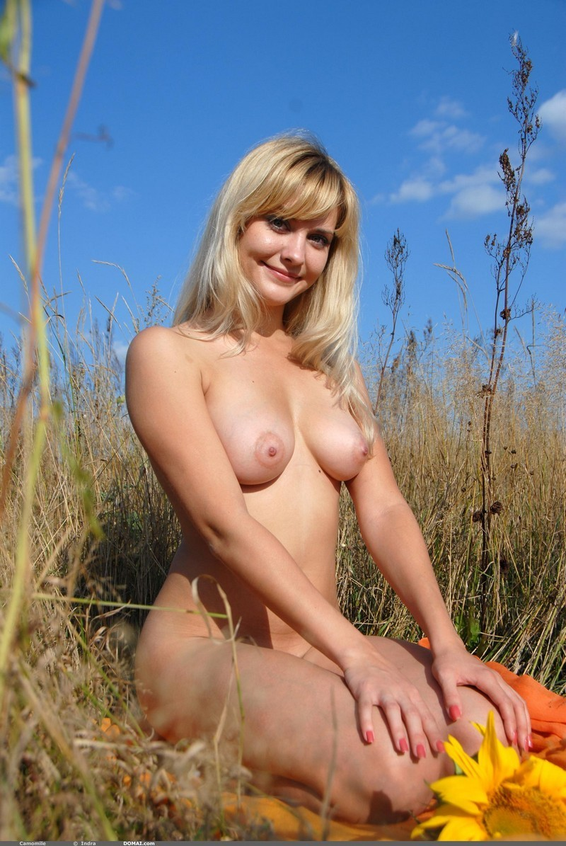 college of party – Amateur